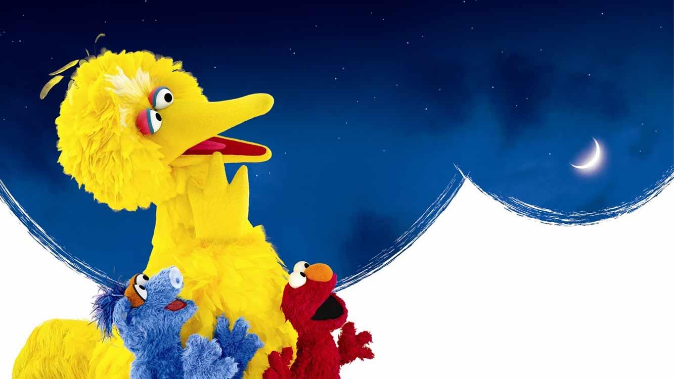 Big Bird's Adventure - One World, One Sky